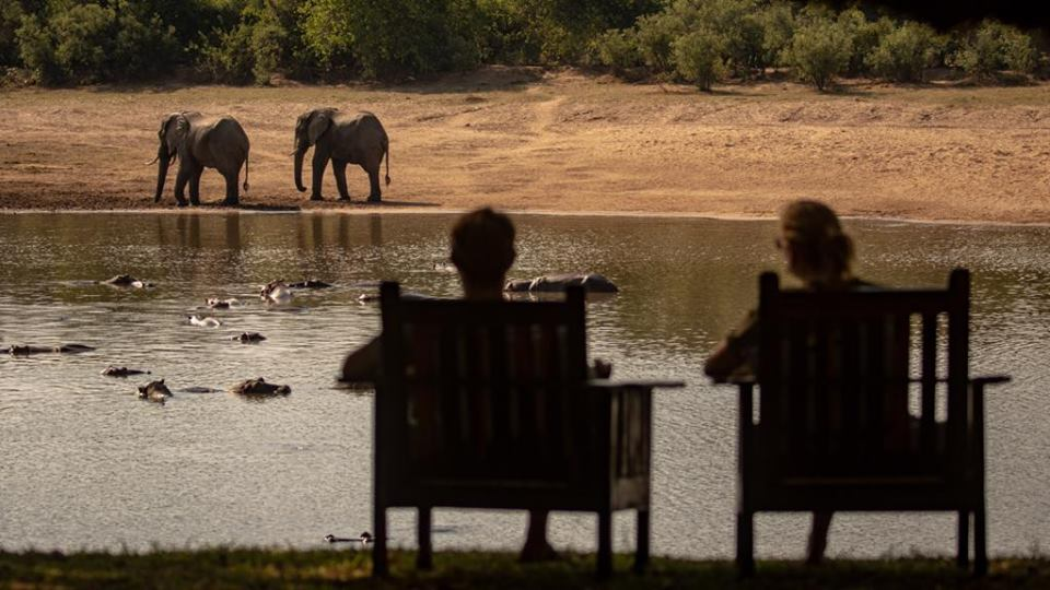 Two people watching elephants in Luambe National Park
