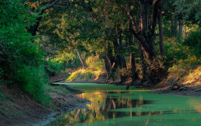 Beauitful scenery and colours of the Luangwa Valley