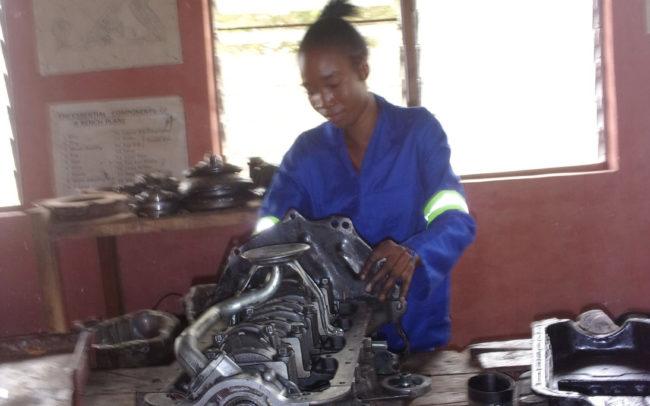 Chikowa Automechanics 2020 Conservation Student From Chitungulu 650x406