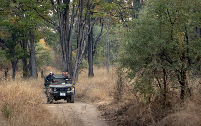Game Drives in the Luambe National Park